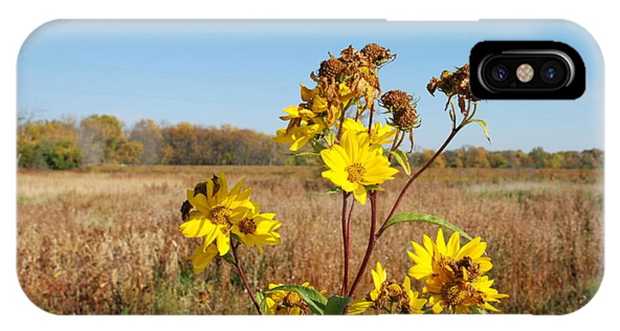 Flower IPhone X Case featuring the photograph Last Blooms Before Fall by Larry Ward