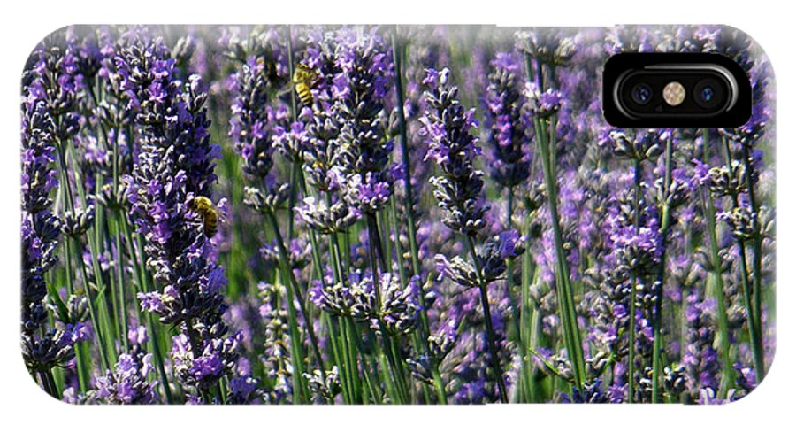 Lavender IPhone X Case featuring the photograph Lavender Field by Teresa Herlinger