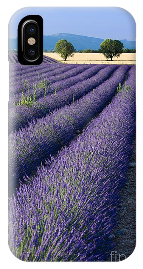 Lavender IPhone X Case featuring the photograph Lavender Fields by Brian Jannsen