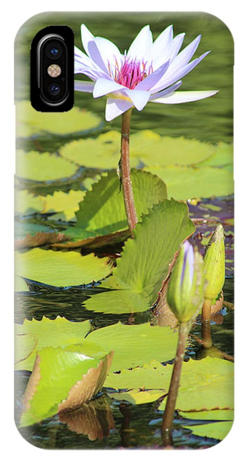 Pond IPhone X Case featuring the photograph Lavender Flower On A Pond by Mark Steven Burhart
