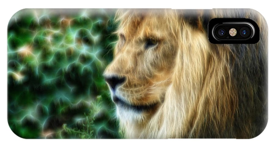 Lion IPhone X Case featuring the photograph Lazy Boy Day Dream At The Buffalo Zoo by Michael Frank Jr