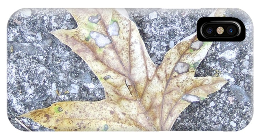 Leaf IPhone X Case featuring the photograph Leaf by Andrea Anderegg