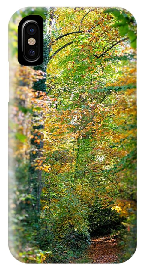 Leaf IPhone X Case featuring the photograph Leaf Path by Rebecca Reed