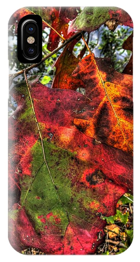 Fall IPhone X Case featuring the photograph Leaves 3 by Jamie Franks
