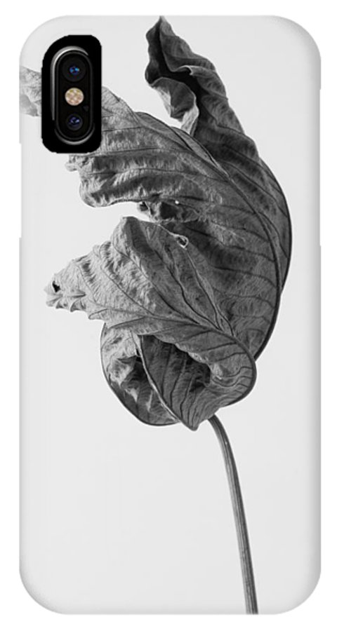 Leaves IPhone X Case featuring the photograph Leaves After Life - Twelve by Widarto Adi