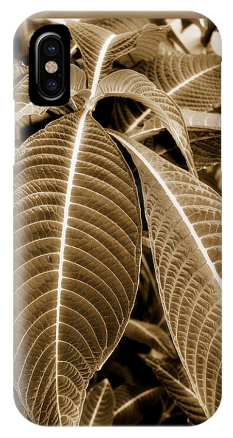 Leaf IPhone X Case featuring the photograph Leaves by Laura Schramm-Behnke
