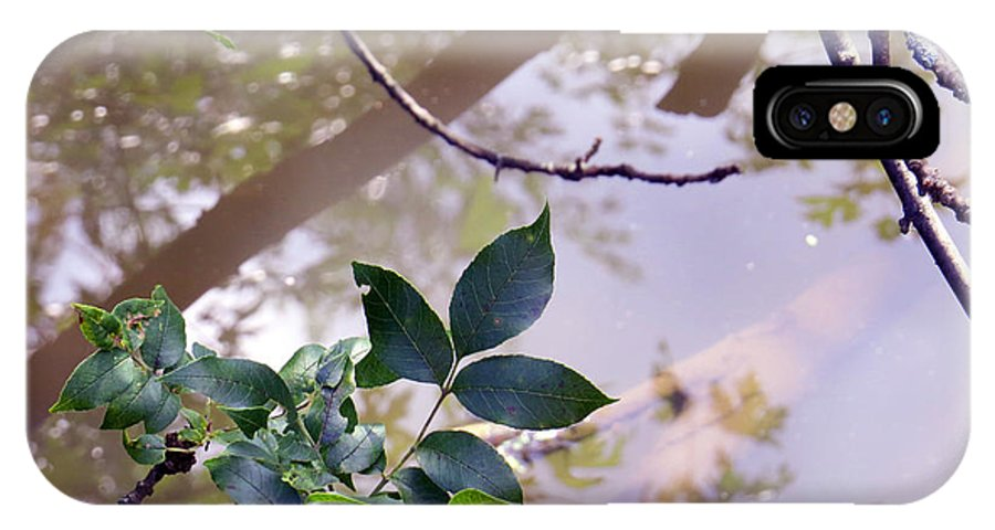 Leaves IPhone X Case featuring the photograph Leaves With Reflection by Kathy Johnson