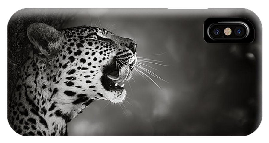 Leopard IPhone X Case featuring the photograph Leopard Portrait by Johan Swanepoel
