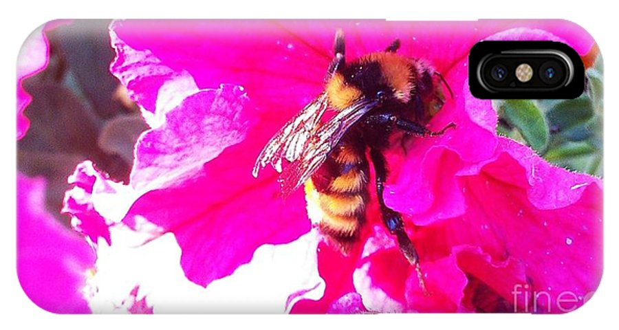 Bees IPhone X Case featuring the photograph Let Me Be Pink by Laurrie Lloyd