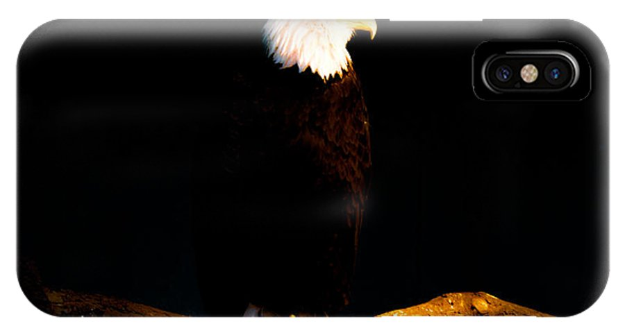 Bald Eagle IPhone X Case featuring the photograph Liberty by Philip Zion