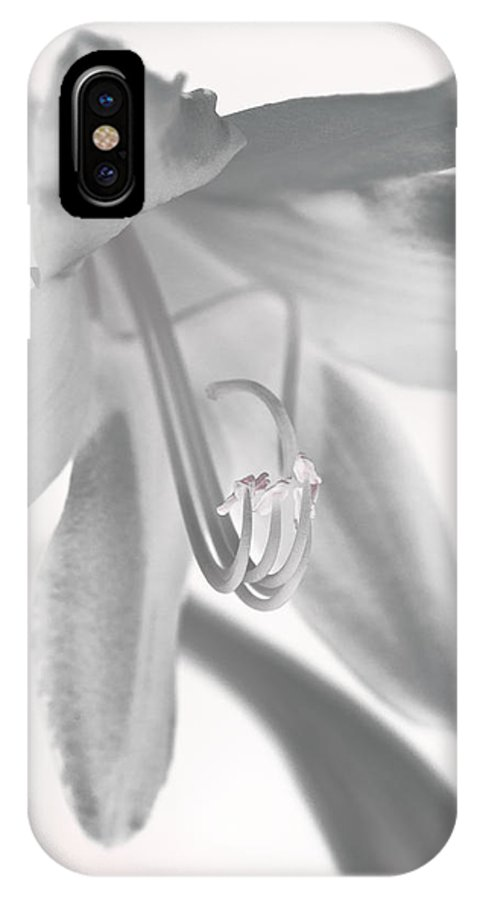 Flower IPhone X Case featuring the photograph Life In Miniature by Paul Watkins