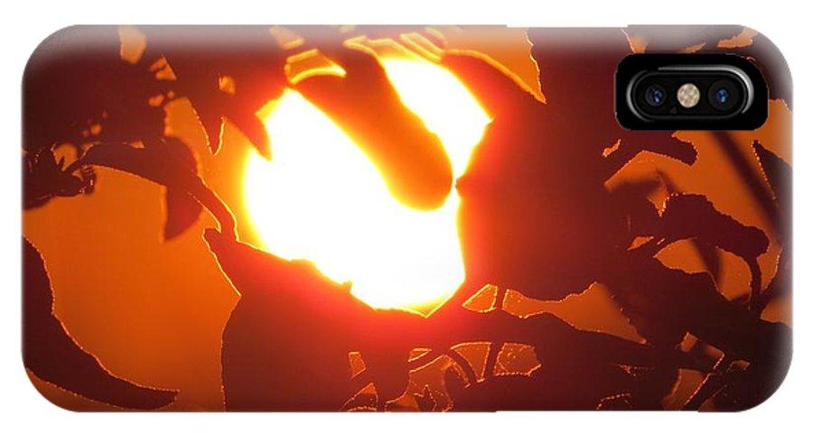 Sun IPhone X Case featuring the photograph Light Bulb by Nikki Watson  McInnes