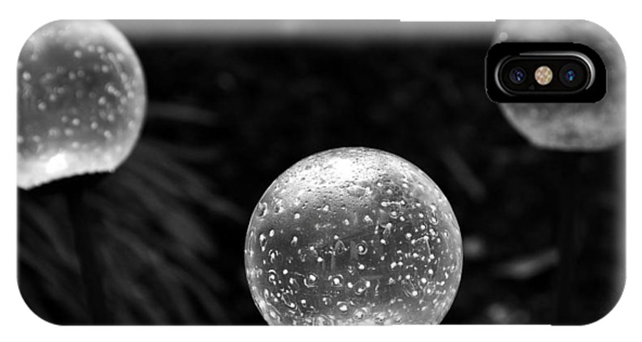 Garden IPhone X Case featuring the photograph Like Moons In The Garden by Gregory Strong