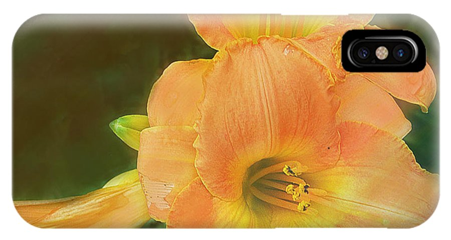 Lilly IPhone X Case featuring the photograph Lilly Enhanced by Ian MacDonald