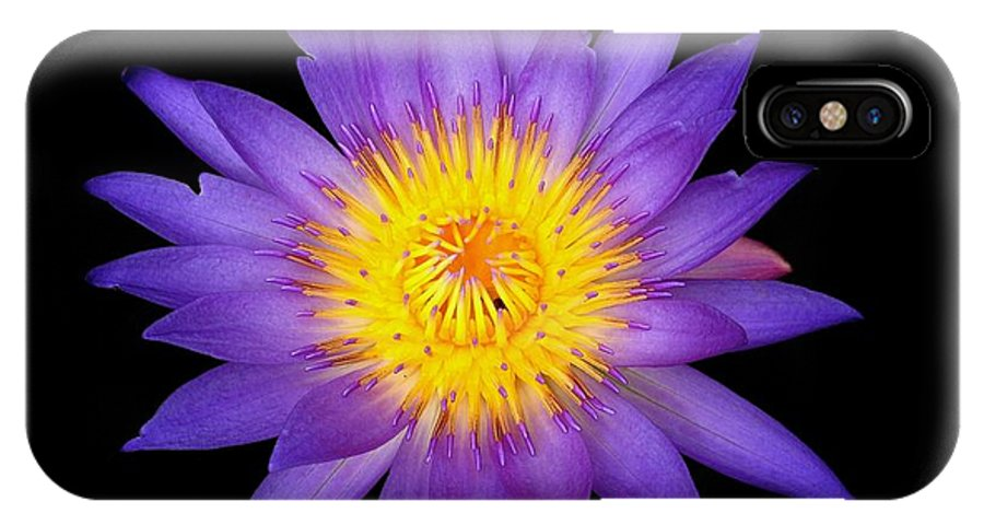 Water Lily IPhone X / XS Case featuring the photograph Lily In The Void by Kendall Muyres