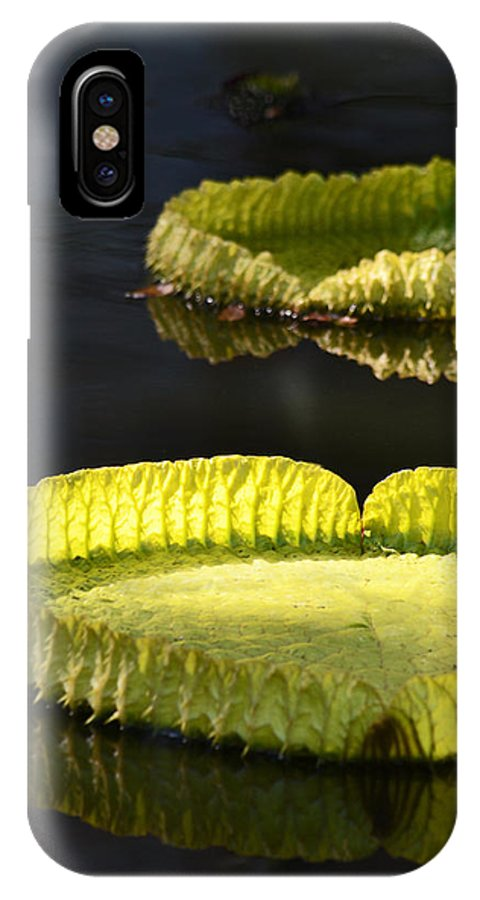 Neon Green IPhone X Case featuring the photograph Lily Pads by GK Hebert Photography
