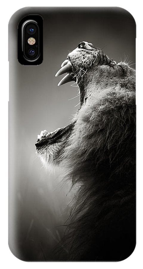 Lion IPhone X Case featuring the photograph Lion Displaying Dangerous Teeth by Johan Swanepoel