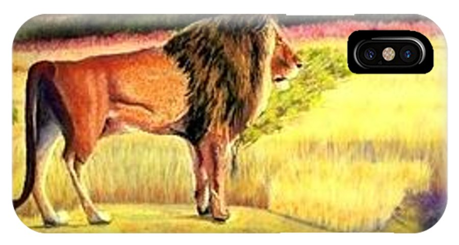 Lion Cat Pastel Outdoors Wildlife Fur IPhone X Case featuring the painting Lion Observing by Jay Johnston