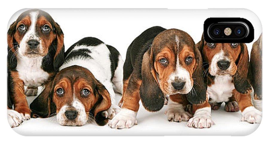 Pets IPhone X Case featuring the photograph Litter Of Basset Hound Puppies by Susan Schmitz