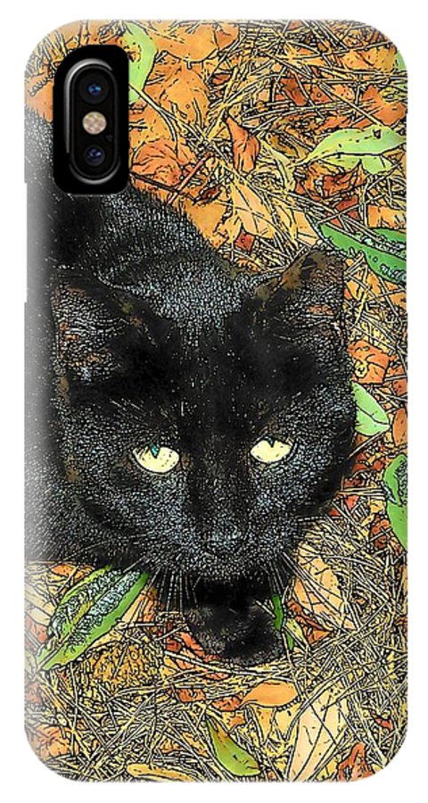 Cat IPhone X Case featuring the photograph Little Black Cat In Fall by Deborah Montana