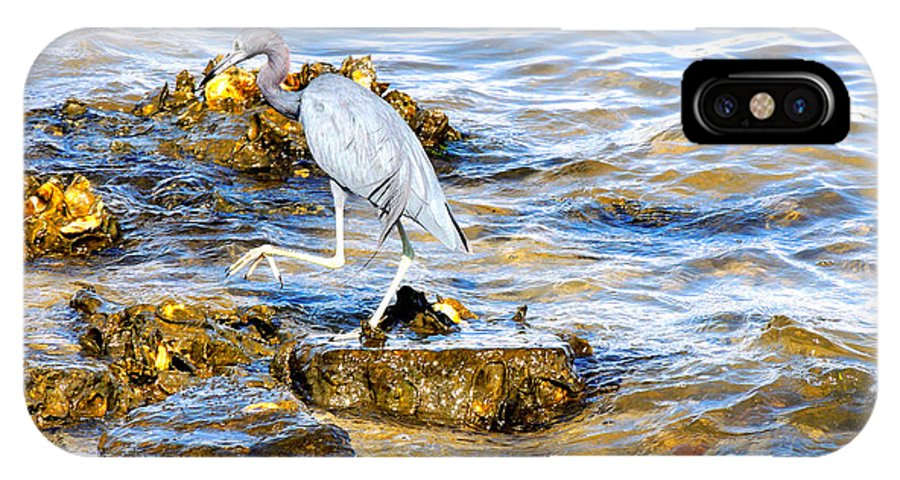 Wading Birds IPhone X Case featuring the photograph Little Blue Heron by Marilyn Holkham