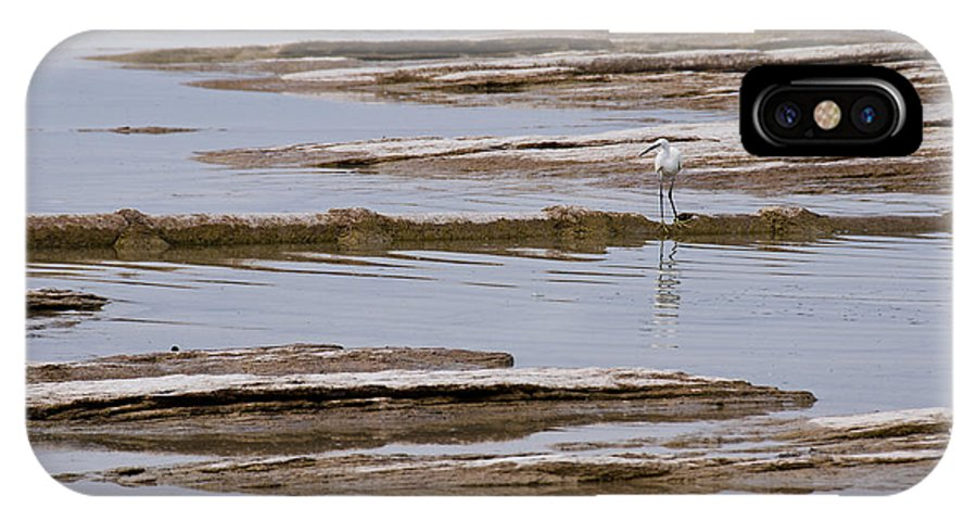Little Egret IPhone X Case featuring the photograph Little Egret by Simona Ghidini