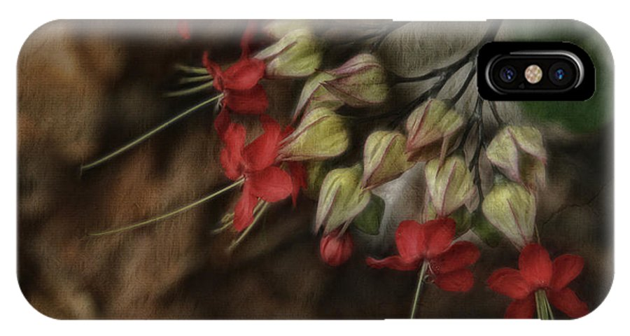 Flowers IPhone X Case featuring the photograph Little Red Flowers by Deborah Benoit