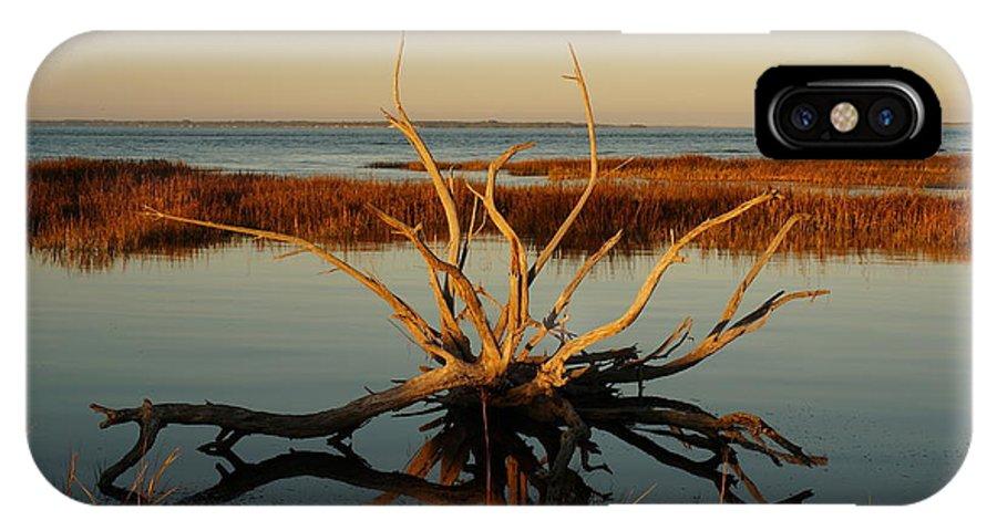 Hilton Head Island IPhone X Case featuring the photograph Live Oak Tidal Pool by Jacqueline Friel