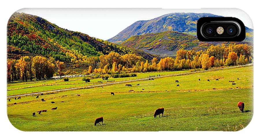 Marabou IPhone X Case featuring the photograph Livestock Grazing In Colorado by Gerald Blaine