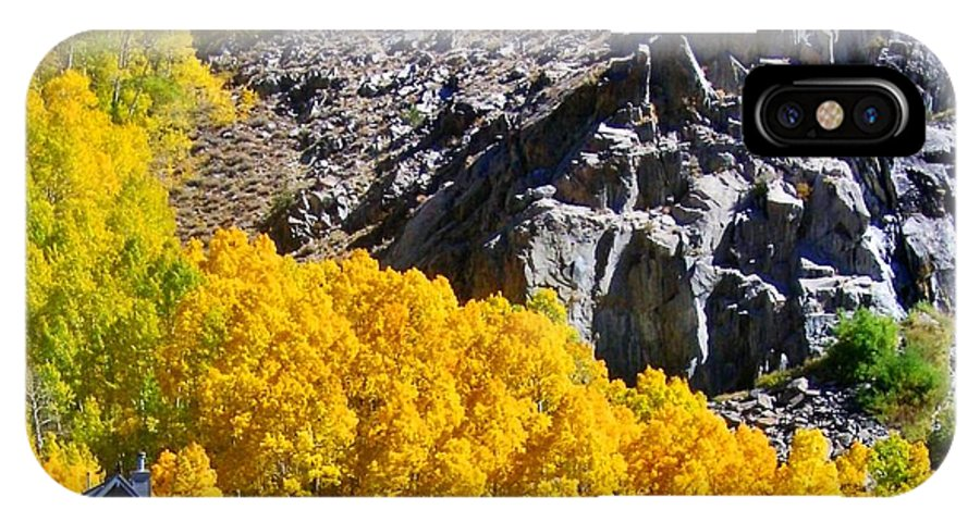 Mountain IPhone X Case featuring the photograph Living Among The Aspens by Marilyn Diaz
