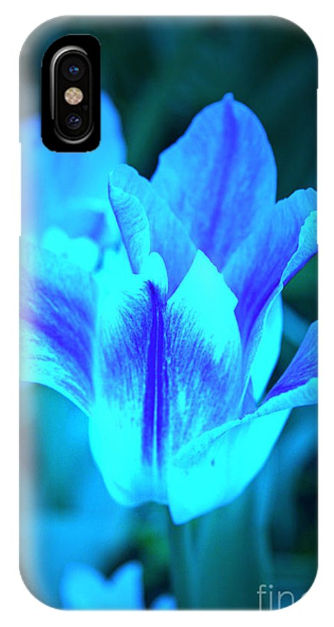 Tulip IPhone X Case featuring the photograph Living Glow by Lali Kacharava