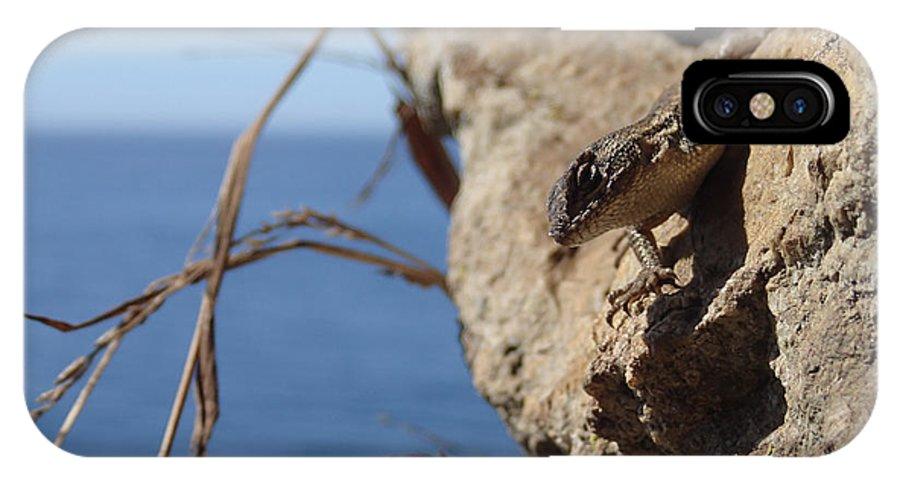 Lizard IPhone X / XS Case featuring the photograph Lizard by Tyler Lucas