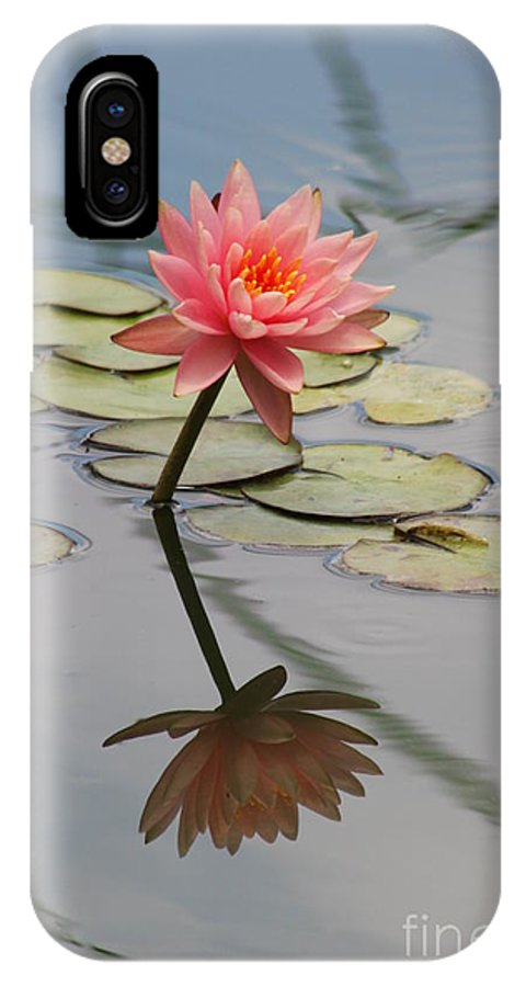 Lily IPhone X Case featuring the photograph Lone Beauty by Christiane Schulze Art And Photography