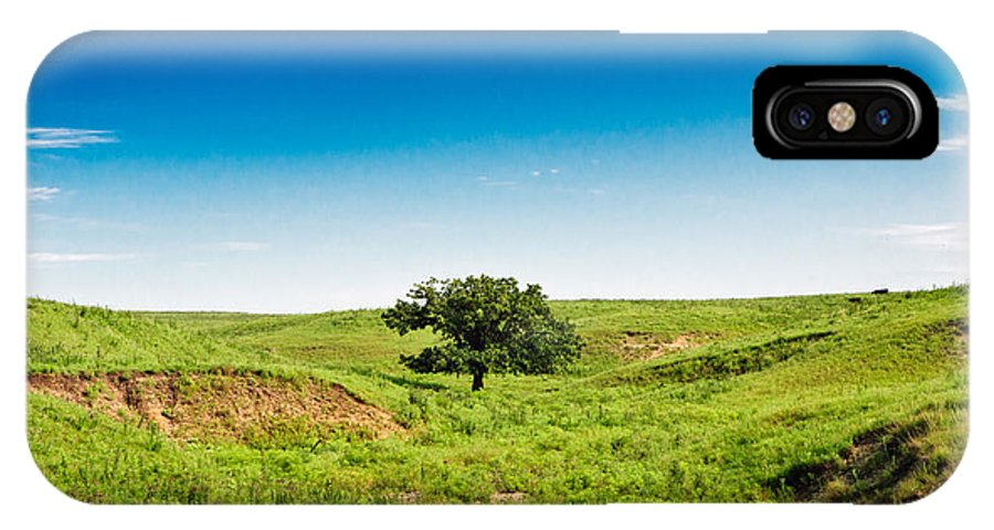 Tree IPhone X Case featuring the photograph Lone Green Tree by Eric Benjamin