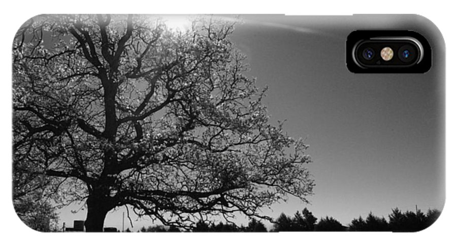 Rural IPhone X Case featuring the photograph Lone Live Oak Bw by Robyn Stacey