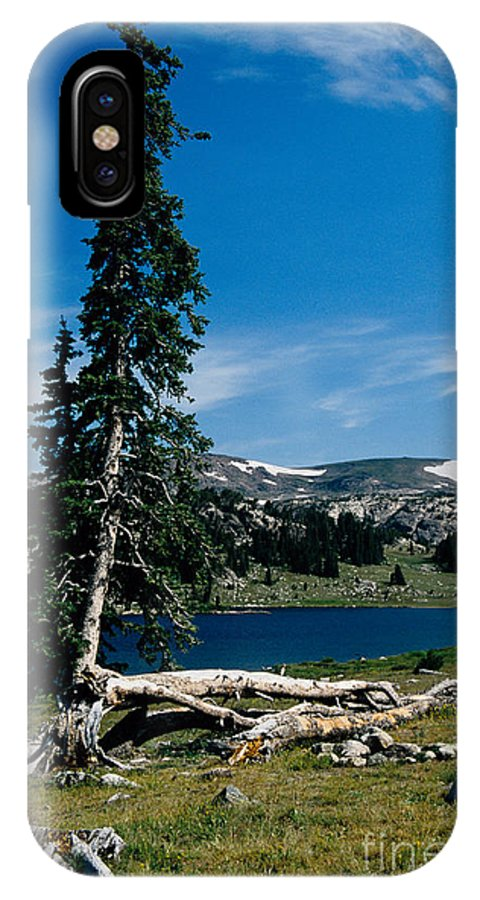 Mountains IPhone X Case featuring the photograph Lone Tree At Pass by Kathy McClure