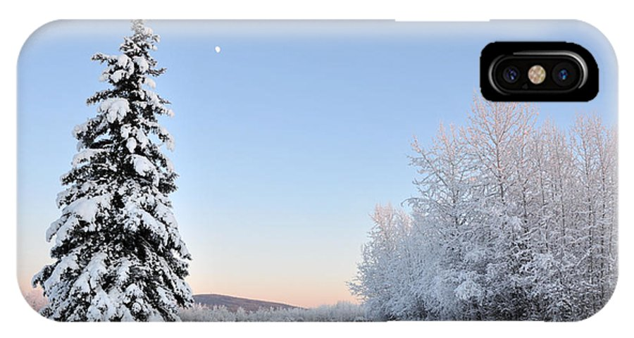 Lone IPhone X Case featuring the photograph Lone Winter Spruce - Alaska by Gary Whitton