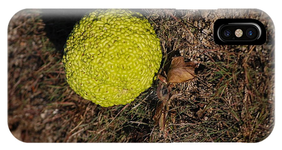 Bumpy IPhone X Case featuring the photograph Lonely Hedge Apple by Mark McReynolds