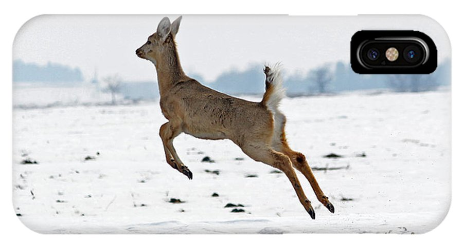 Deer IPhone X Case featuring the photograph Look I Am Flying by Lori Tordsen