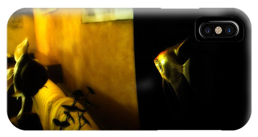 Goldfish IPhone X Case featuring the photograph Looking Out by Silvia Ganora