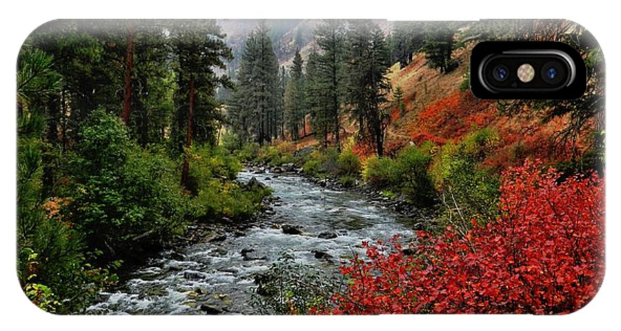 Landscape IPhone X Case featuring the photograph Loon Creek In Fall Colors by Link Jackson