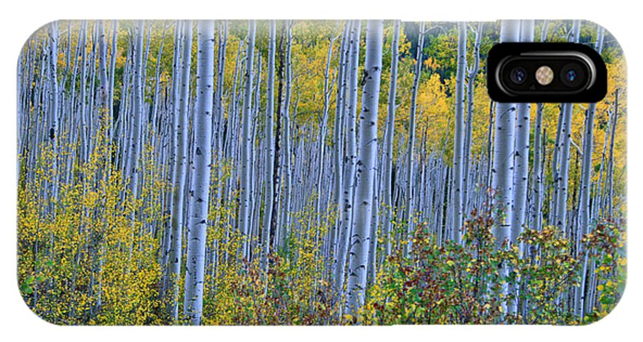 Aspen Grove IPhone X / XS Case featuring the photograph Lost In The Crowd by Jeremy Rhoades