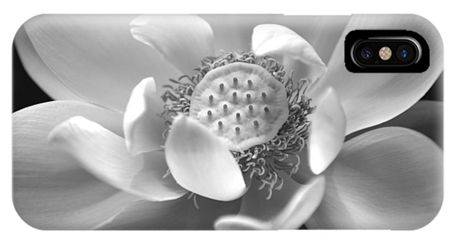 Lotus IPhone X Case featuring the photograph Lotus by Christopher M Stewart