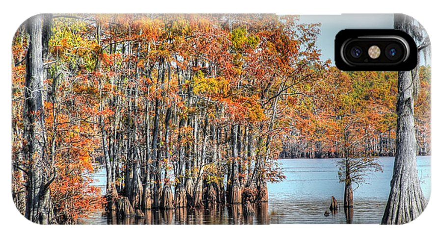 Swamp IPhone X Case featuring the photograph Louisiana Autumn by Ester Rogers