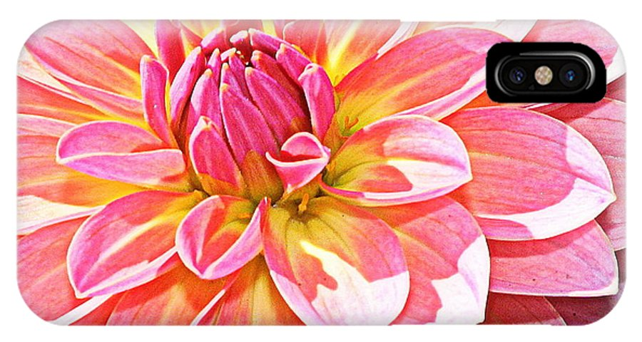 Dahlia IPhone X Case featuring the photograph Lovely In Pink - Dahlia by Dora Sofia Caputo Photographic Design and Fine Art