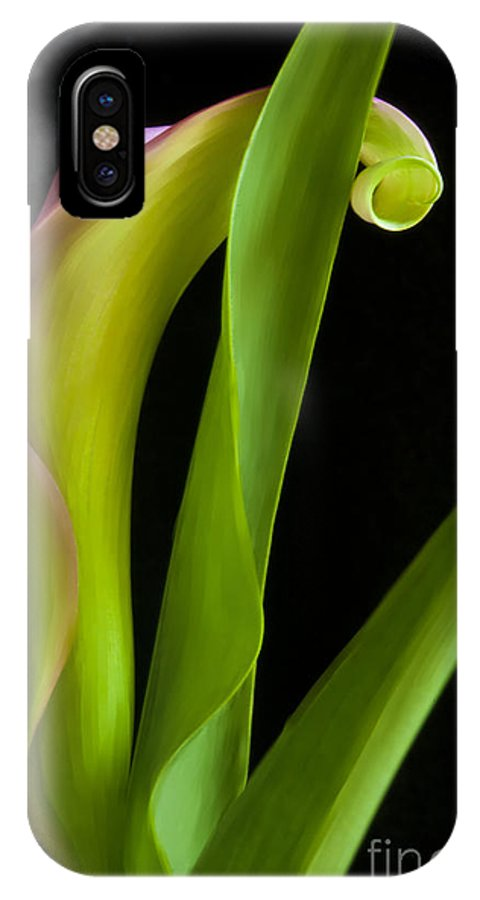 Calla Lily IPhone X Case featuring the painting Lovers Digital Art by Michelle Wiarda-Constantine