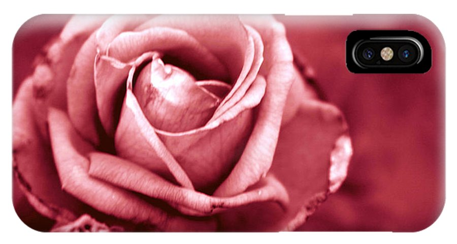 Perfect Antique Rose IPhone X Case featuring the photograph Lovers Rose by D L Darden