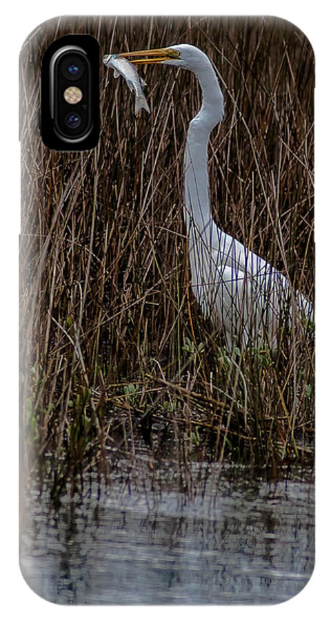 Great Egret IPhone X Case featuring the photograph Lunch Time by Charles Moore
