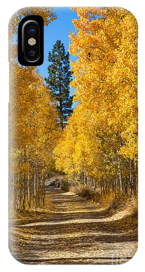 Eastern Sierra IPhone X Case featuring the photograph Lundy Canyon by Mimi Ditchie
