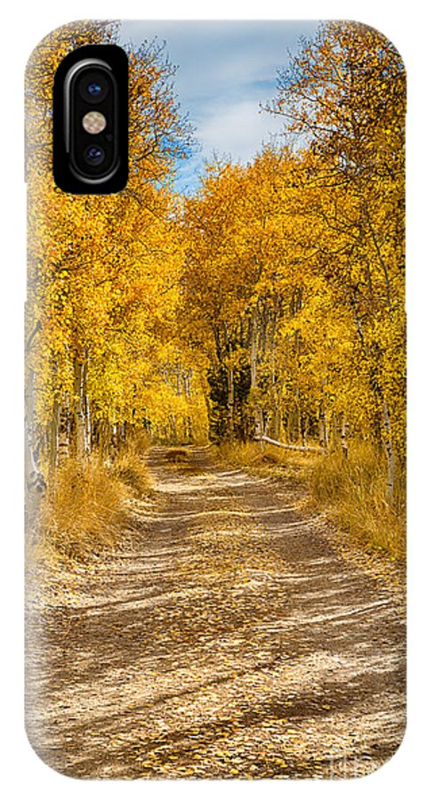 Eastern Sierra IPhone X Case featuring the photograph Lundy Canyon Pathway by Mimi Ditchie